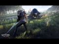 "The Witcher 3: Wild Hunt | E3 Trailer Music ""Sword of Destiny"""