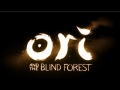 ORI AND THE BLIND FOREST Trailer - E3 2014 [HD+]