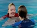 Dolphin Tale 2 2014 [Download .torrent]