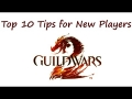 Shin's Top 10 Tips for New Guild Wars 2 Players