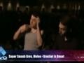 Super Smash Bros. Melee - Evo 2013 Grand Finals
