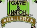 CGRundertow GAME & WATCH GALLERY for Game Boy Video Game Review